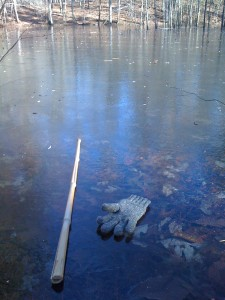 To prove the frozen-ness, I risked losing my stick and glove.
